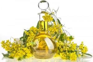 huile de colza et vertus pour la bonne santé